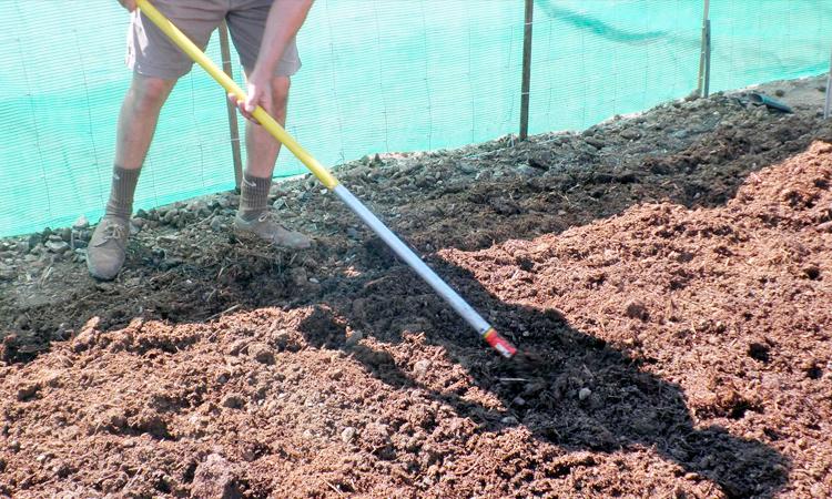 Cómo preparar el suelo para el otoño y el invierno - Tiendajardin.es